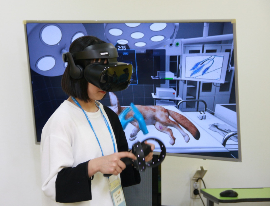 A student performs virtual reality surgery on an animal at a Samsung C&T office during the Junior C&T Academy program.
